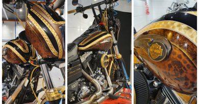 Cuidando da Phoenix no Leve Limpo Motorcycle Wash
